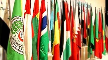 OIC-flags.jpg
