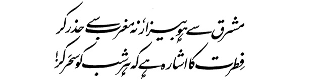 contributions of allama iqbal in the This feeling was a milestone in the creation of pakistan iqbal's political life allama iqbal made his debut in politics then he was elected as the member of punjab's legislative assembly in 1926.